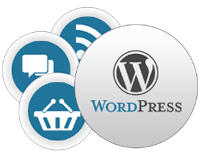 wordpress-development-services-udaipur